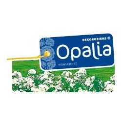 Opalia Décorosier®