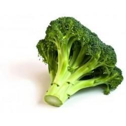 Choux brocoli